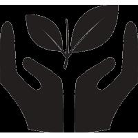 Руки оберегающие растение