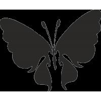 Бабочка 19
