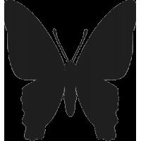 Бабочка 27