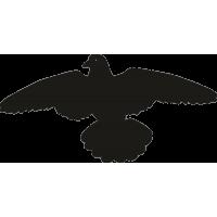 Летающий голубь