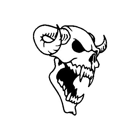 Череп 41