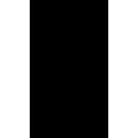 Череп 45