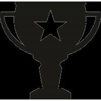 Кубок со звездой