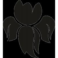 Цветок 17