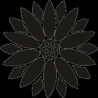 Цветок 71