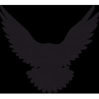 Птица в Полете 3