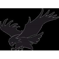 Орел с раскрытыми Крыльями