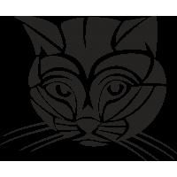 Кот с полосками на Мордочке