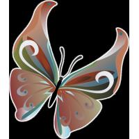 Бабочка 97