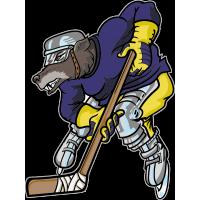 Волк - хоккеист
