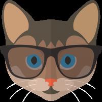 Кошка в очках