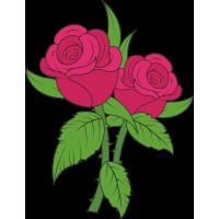 Две розы