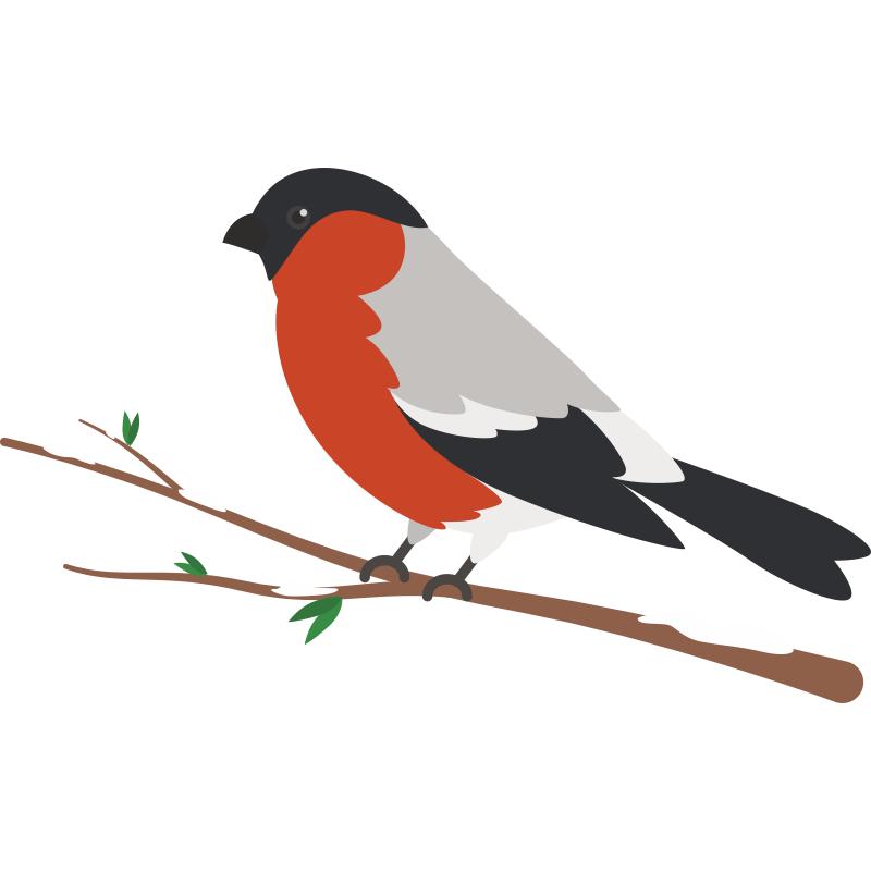 ⬇ скачать стоковое фото рисунок птицы популярный фотобанк доступные цены миллионы роялти-фри фотографий, изображений и картинок в высоком разрешении.