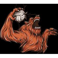 Волк волейболист