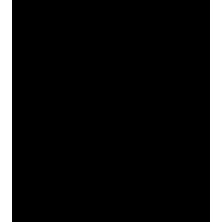 Кот Субару