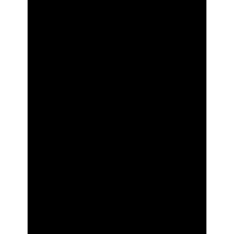 Kamaz (Эмблема логотип Камаз)