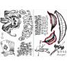 Набор татуировок Джокера из Отряда Самоубийц