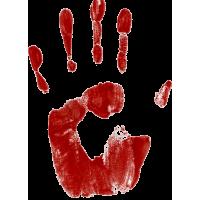 """Кровавый след"" на хэллоуин"