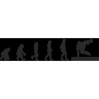 Эволюция от обезьяны до Брейкдансера