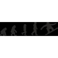 Эволюция от обезьяны до Серфбордиста 2